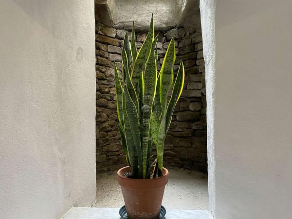 Appartamento in affitto a Firenze, Arredato, 62 mq - Foto 5