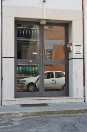 Appartamento in affitto a Ciampino, Arredato, con giardino, 40 mq - Foto 20