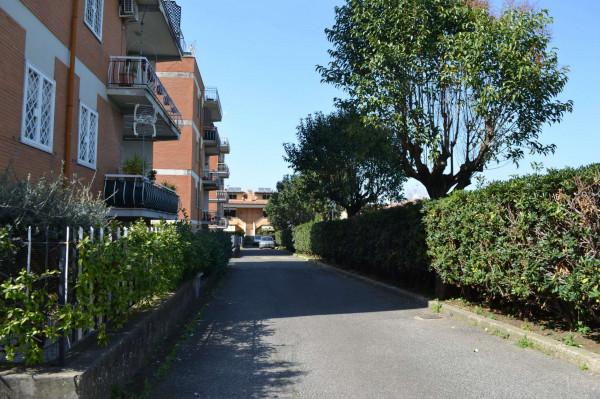 Appartamento in affitto a Ciampino, Arredato, con giardino, 40 mq - Foto 19