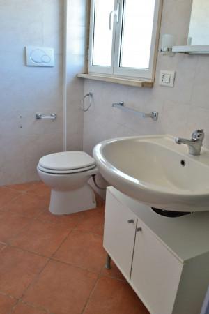 Appartamento in affitto a Ciampino, Arredato, con giardino, 40 mq - Foto 4
