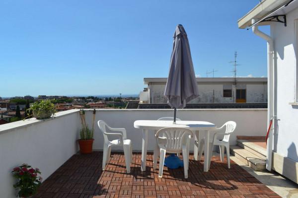 Appartamento in affitto a Ciampino, Arredato, con giardino, 40 mq