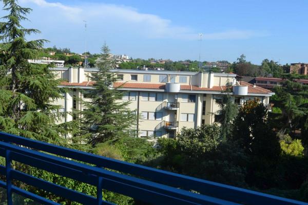 Appartamento in affitto a Roma, Mostacciano, 85 mq - Foto 5