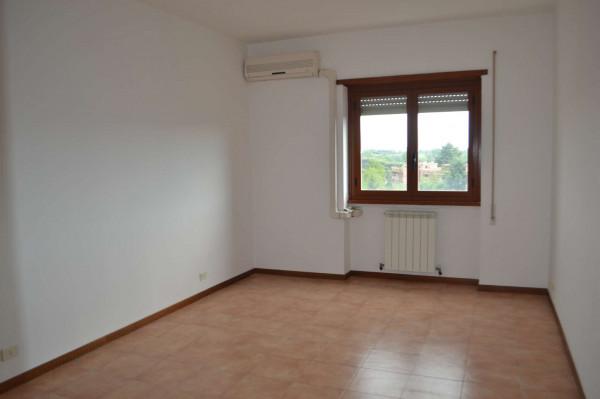 Appartamento in affitto a Roma, Mostacciano, 110 mq - Foto 10