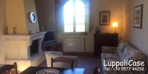Appartamento in affitto a Siena, 60 mq