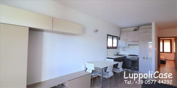 Appartamento in affitto a Sovicille, Arredato, 70 mq