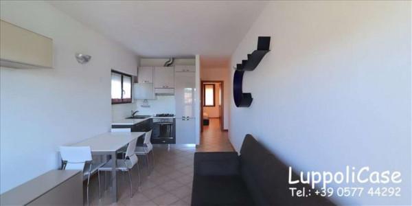 Appartamento in affitto a Sovicille, Arredato, 70 mq - Foto 21