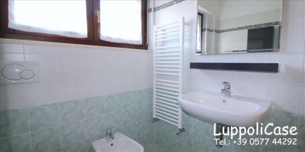 Appartamento in affitto a Sovicille, Arredato, 70 mq - Foto 4