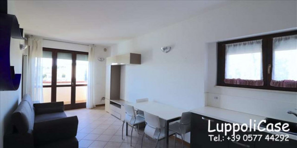 Appartamento in vendita a Sovicille, Arredato, 80 mq