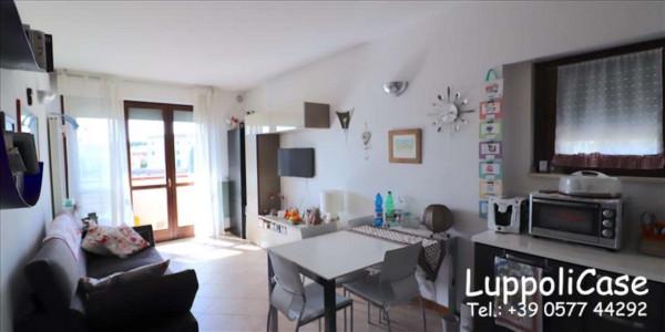Appartamento in vendita a Sovicille, Arredato, 80 mq - Foto 35