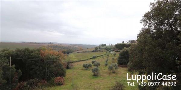 Appartamento in vendita a Castelnuovo Berardenga, 120 mq