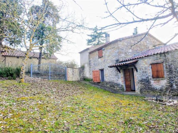 Rustico/Casale in vendita a Città di Castello, Con giardino, 150 mq