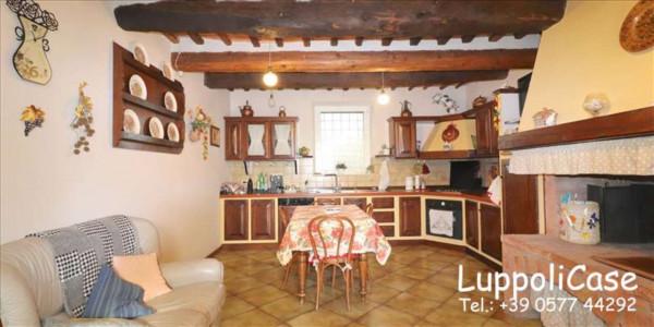 Appartamento in vendita a Sovicille, Con giardino, 200 mq - Foto 6
