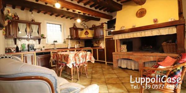 Appartamento in vendita a Sovicille, Con giardino, 200 mq - Foto 5