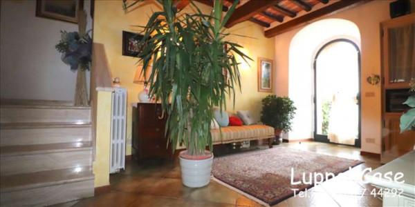 Appartamento in vendita a Sovicille, Con giardino, 200 mq - Foto 8