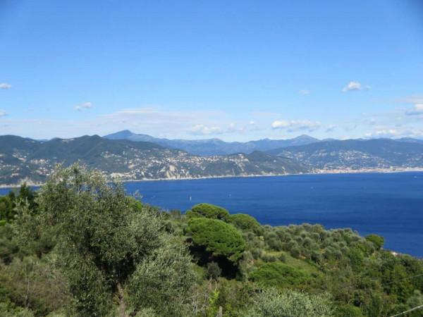 Appartamento in vendita a Portofino, Terruzzo, Con giardino, 160 mq