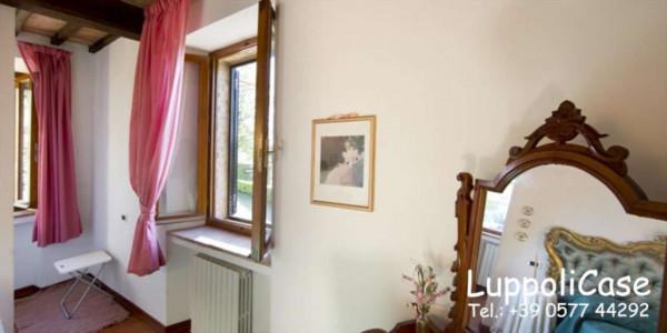 Appartamento in affitto a Castelnuovo Berardenga, Arredato, 65 mq - Foto 7