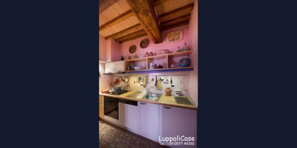 Appartamento in affitto a Castelnuovo Berardenga, Arredato, 65 mq - Foto 10