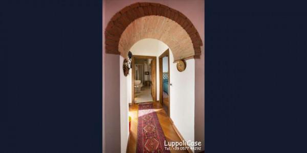 Appartamento in affitto a Castelnuovo Berardenga, Arredato, 65 mq - Foto 3