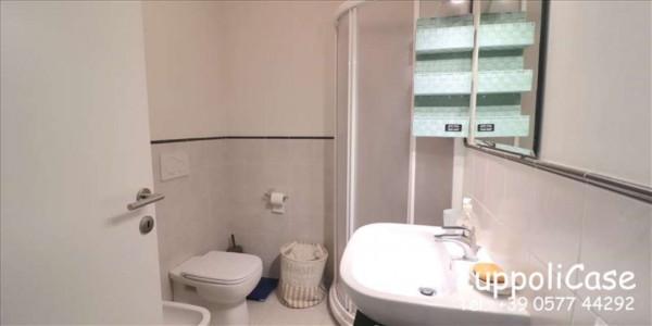 Appartamento in affitto a Siena, Arredato, 50 mq - Foto 5