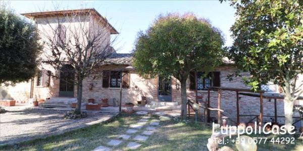 Villa in vendita a Castelnuovo Berardenga, Arredato, con giardino, 222 mq - Foto 14