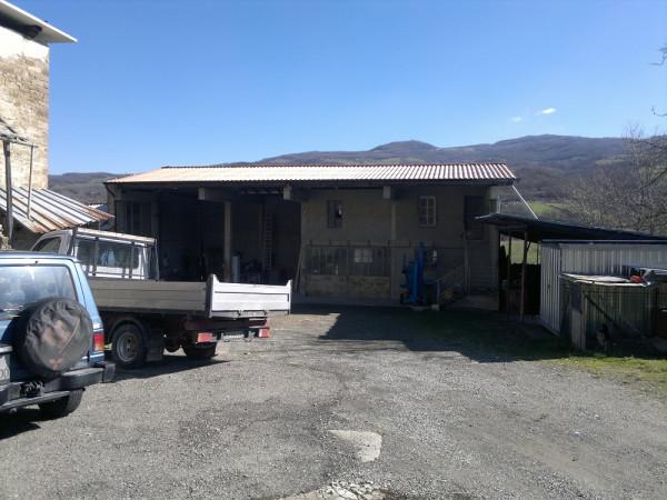 Locale Commerciale  in vendita a Bettola, Con giardino, 330 mq - Foto 2
