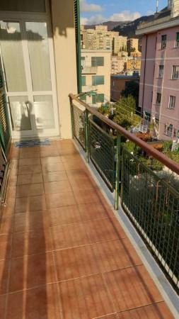 Appartamento in affitto a Genova, Adiacenze Via Pontetti, 100 mq - Foto 30