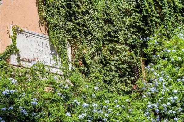 Locale Commerciale  in vendita a Roma, Trastevere, Arredato, 105 mq - Foto 3