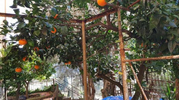 Appartamento in vendita a Genova, Adiacenze Via Penego, Con giardino, 65 mq - Foto 25