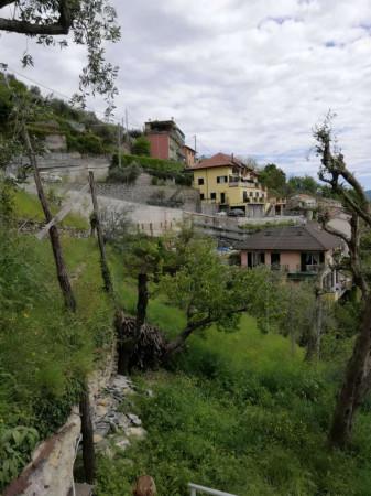 Appartamento in affitto a Avegno, Arredato, con giardino, 100 mq