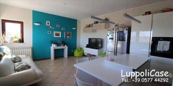 Appartamento in vendita a Monteroni d'Arbia, Arredato, con giardino, 80 mq - Foto 12