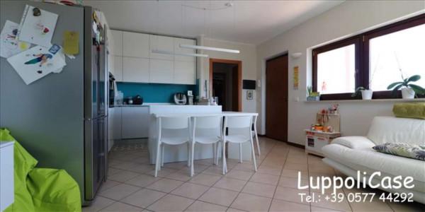 Appartamento in vendita a Monteroni d'Arbia, Arredato, con giardino, 80 mq - Foto 9