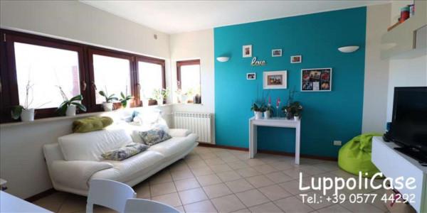 Appartamento in vendita a Monteroni d'Arbia, Arredato, con giardino, 80 mq - Foto 7