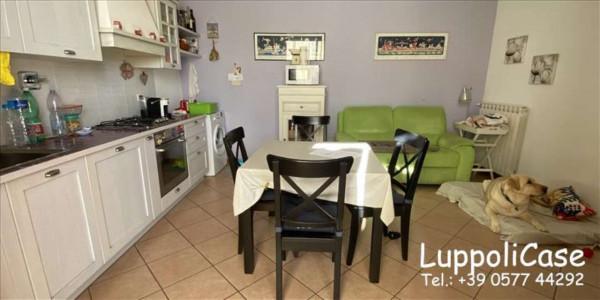 Appartamento in vendita a Sovicille, Con giardino, 57 mq - Foto 16