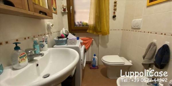 Appartamento in vendita a Sovicille, Con giardino, 57 mq - Foto 8