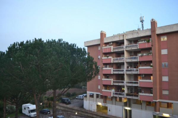 Appartamento in affitto a Roma, Con giardino, 125 mq
