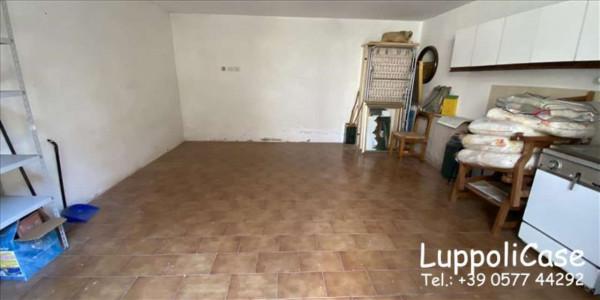 Appartamento in vendita a Castelnuovo Berardenga, Con giardino, 76 mq - Foto 3
