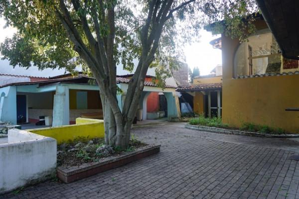 Locale Commerciale  in vendita a Neive, Agricola, Con giardino, 1600 mq - Foto 38