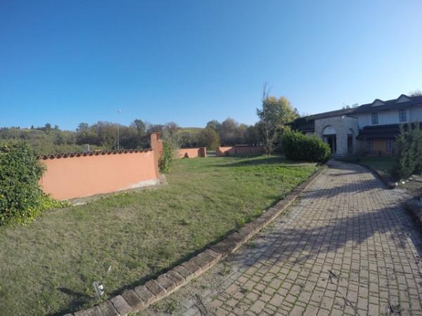 Locale Commerciale  in vendita a Neive, Agricola, Con giardino, 1600 mq - Foto 15