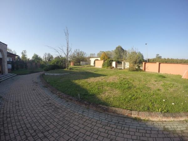 Locale Commerciale  in vendita a Neive, Agricola, Con giardino, 1600 mq - Foto 7