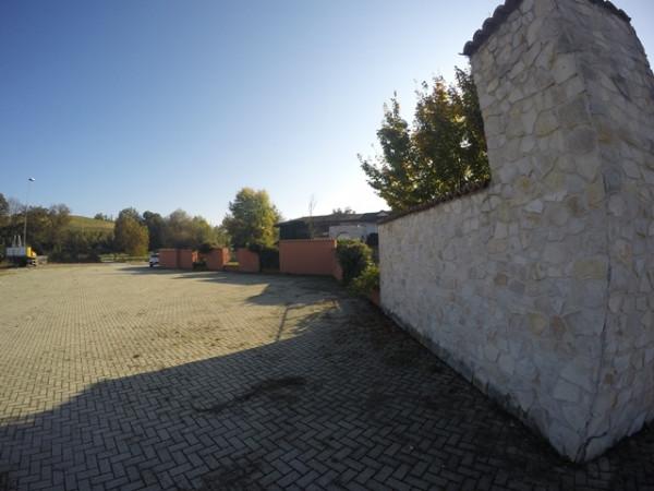 Locale Commerciale  in vendita a Neive, Agricola, Con giardino, 1600 mq - Foto 18