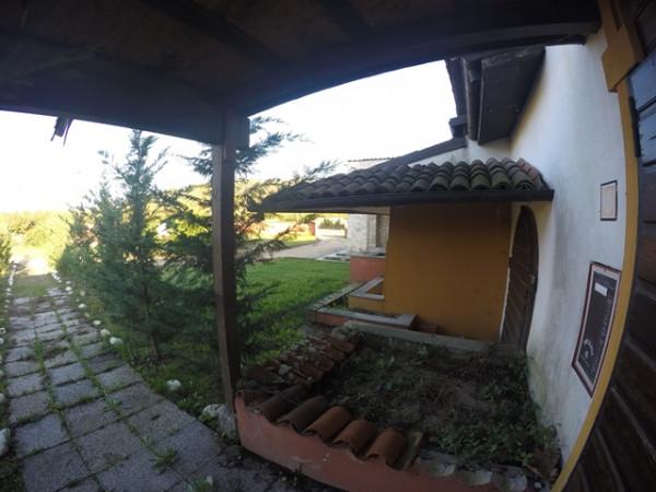 Locale Commerciale  in vendita a Neive, Agricola, Con giardino, 1600 mq - Foto 10