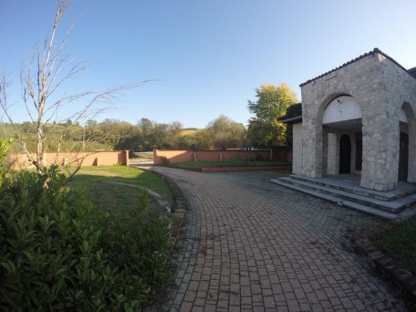 Locale Commerciale  in vendita a Neive, Agricola, Con giardino, 1600 mq - Foto 13