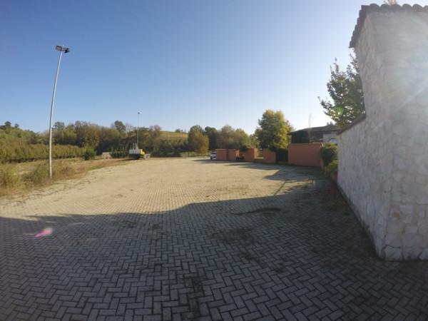 Locale Commerciale  in vendita a Neive, Agricola, Con giardino, 1600 mq - Foto 17
