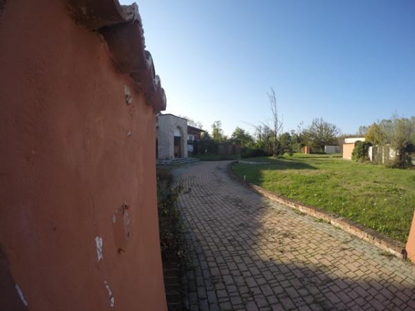 Locale Commerciale  in vendita a Neive, Agricola, Con giardino, 1600 mq - Foto 8