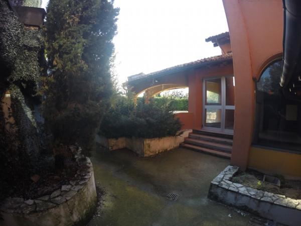 Locale Commerciale  in vendita a Neive, Agricola, Con giardino, 1600 mq - Foto 32