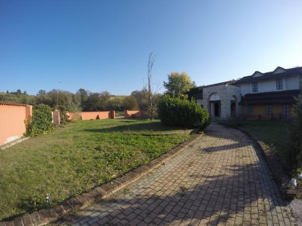 Locale Commerciale  in vendita a Neive, Agricola, Con giardino, 1600 mq - Foto 21