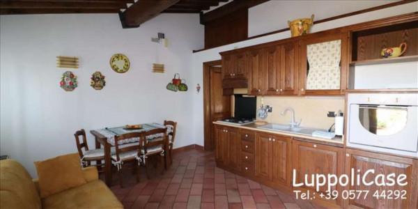 Appartamento in affitto a Siena, Arredato, con giardino, 40 mq - Foto 6