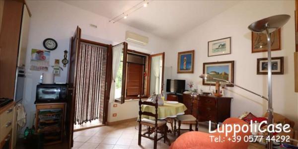 Villa in vendita a Siena, Arredato, con giardino, 50 mq - Foto 9