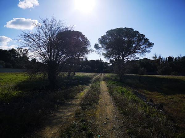 Rustico/Casale in vendita a Lecce, Rudiae, 350 mq