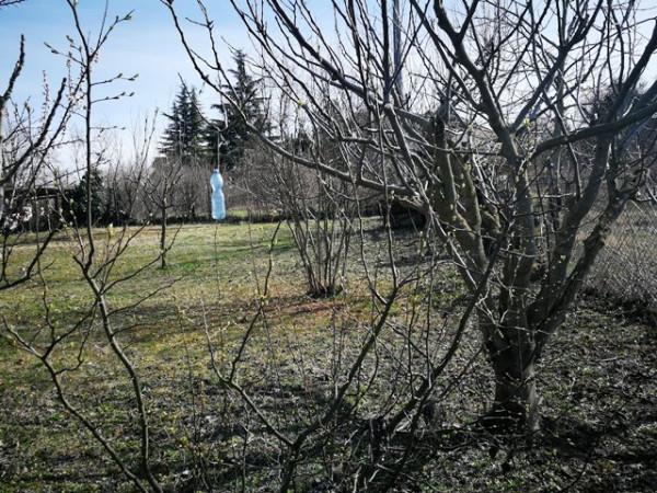 Villetta a schiera in vendita a Isola d'Asti, Repergo, Con giardino, 167 mq - Foto 32